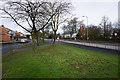 SJ4990 : Grass verge by Warrington Road by Bill Boaden