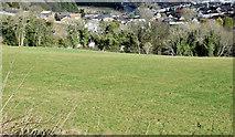 J4772 : Field and houses, Scrabo, Newtownards (February 2015) by Albert Bridge