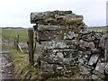 NR3445 : Former gatepost near Cornabus, Islay by Becky Williamson