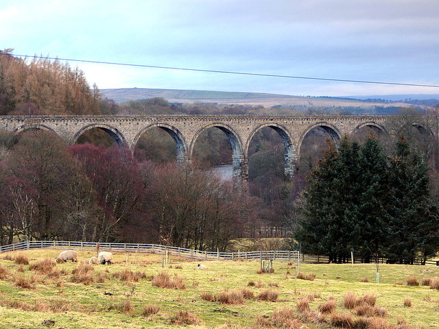 Lambley Viaduct from south