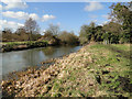 TG2521 : Footpath along the north bank of the River Bure by Adrian S Pye