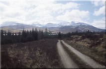 NN0538 : Forest road above Dail by Richard Webb