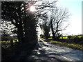 TM1177 : Mellis Road, Thrandeston by Geographer