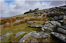 SX5680 : Lynch Tor by jeff collins