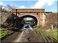 TM1176 : Arch Railway Bridge on Mellis Road by Geographer