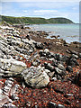 NR4863 : Jura coastline by William Starkey