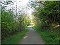NS9597 : The Devon Way by William Starkey