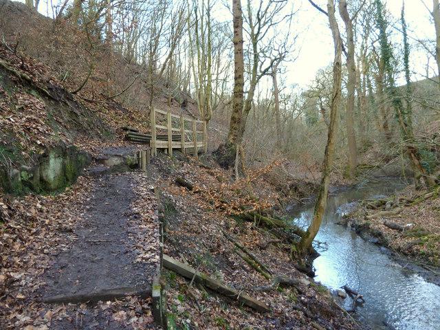 Footpath along Dean Brook, Dean Wood