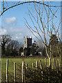 TM1176 : St.Margaret's Church, Thrandeston by Geographer
