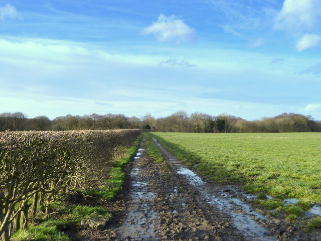 Footpath to Dean Wood from Orrell House Farm