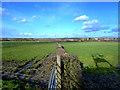 SD5306 : Hedge field boundary at Orrell House Farm, Gathurst by Gary Rogers
