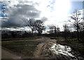 TM1176 : Footpath off Mellis Road by Geographer