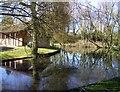SP7901 : Ornamental Lake, Saunderton by Des Blenkinsopp