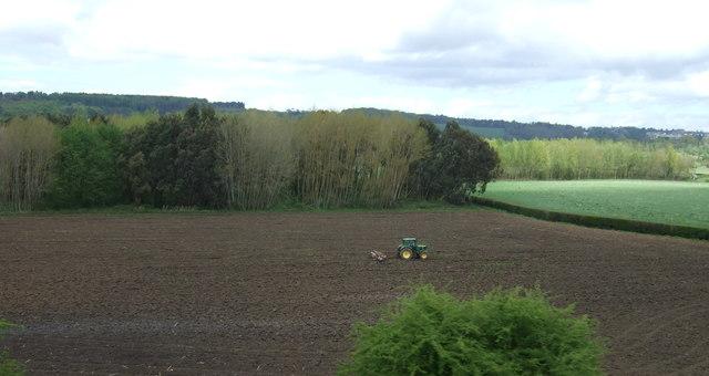 Farmland and woodland east of Long Ashton
