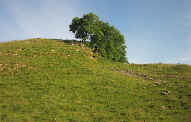 Trees above Cave Dale