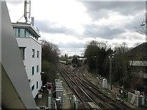 TQ1572 : Railway by Alex McGregor