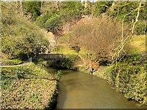 SJ8383 : Rustic Bridge over River Bollin, Quarry Bank Mill by David Dixon
