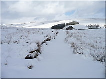 SD7992 : The Pennine Bridleway in Wensleydale by Christine Johnstone