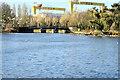 J3675 : Lake, Victoria Park, Belfast (March 2015) by Albert Bridge