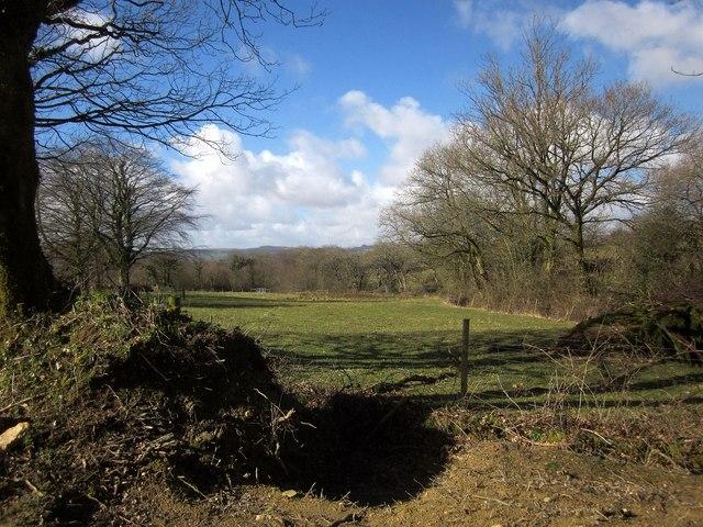Field, Trefinnick
