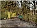 SJ8281 : Bridlepath to Moor Lane by David Dixon