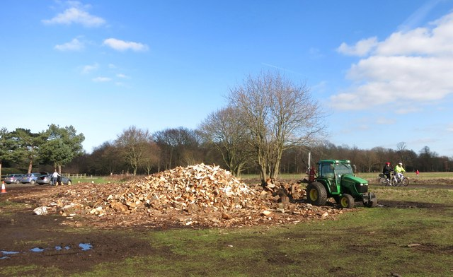Logpile on the Common