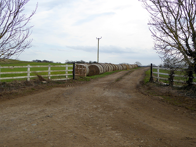 "Farm road and ""Swiss rolls"" at Carlbury"