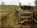 ST1379 : Stile to a mass of brambles near Radyr, Cardiff by Jaggery