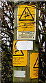 ST1279 : Danger of death overkill near Radyr, Cardiff by Jaggery