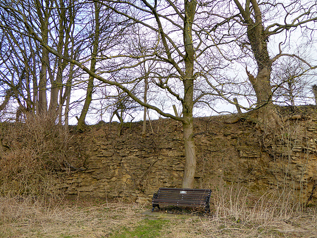 Wayside bench by Highside Road