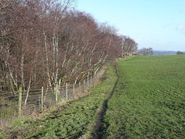 The Calderdale Way, Elland FP003