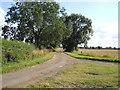 TF1507 : North Fen Road near Glinton by Paul Bryan