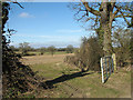 TG2504 : Gate into cultivated field east of Bungay Road by Evelyn Simak