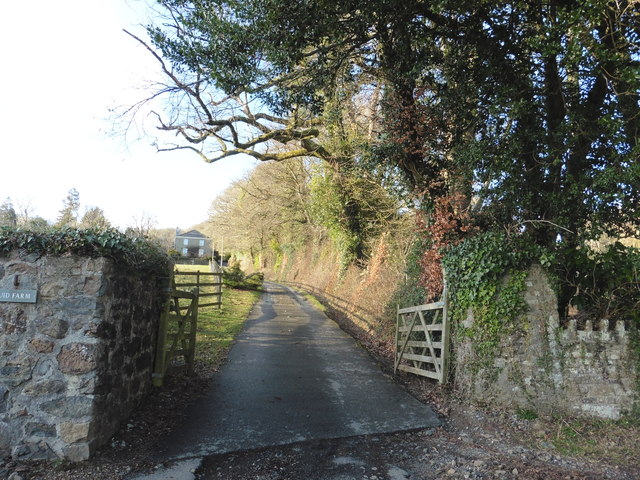 The road to Druid Farm, near Ashburton