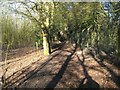 TQ2195 : Arkley: Footpath to Rowley Green (1) by Nigel Cox