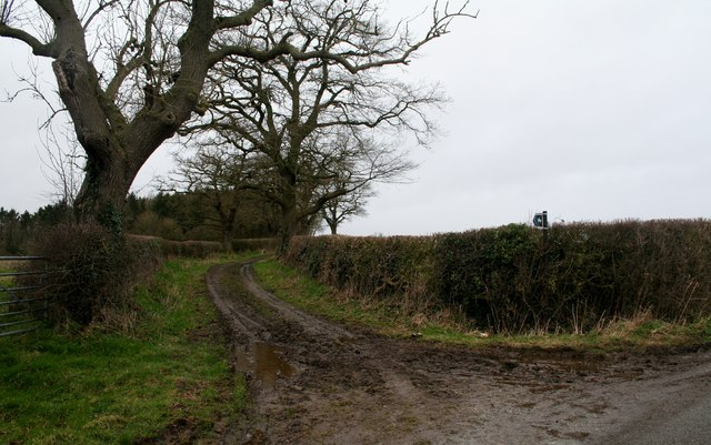 Well used bridleway