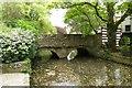 SZ1692 : Footbridge over the River Avon millstream by Steve Daniels