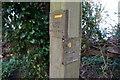 SX9365 : Southwest Coast Path Marker Post at Babbacombe by Ian S