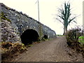 "H4869 : ""Dry arches"", Bloody Bridge by Kenneth  Allen"
