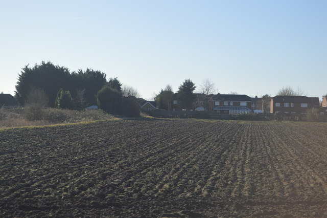 Field on the edge of March