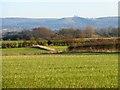 SP7910 : Farmland, Bishopstone by Andrew Smith