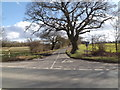 TM0676 : Buggs Road, Burgate by Geographer