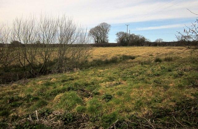 Field, Hittisleigh