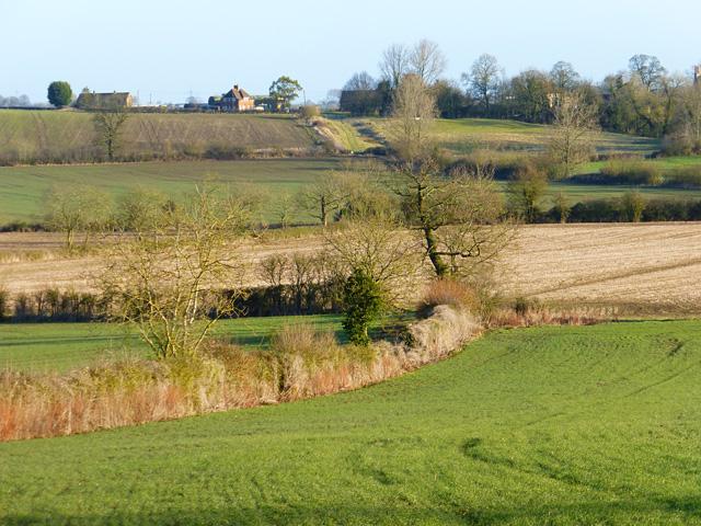 Farmland, Whitchurch