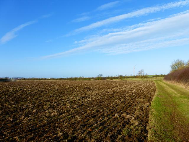 Farmland, Quarrendon