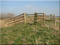 TG3504 : Two gates on the floodbank by Evelyn Simak