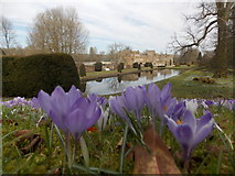 ST3505 : Forde Abbey: view over the Long Pond by Chris Downer