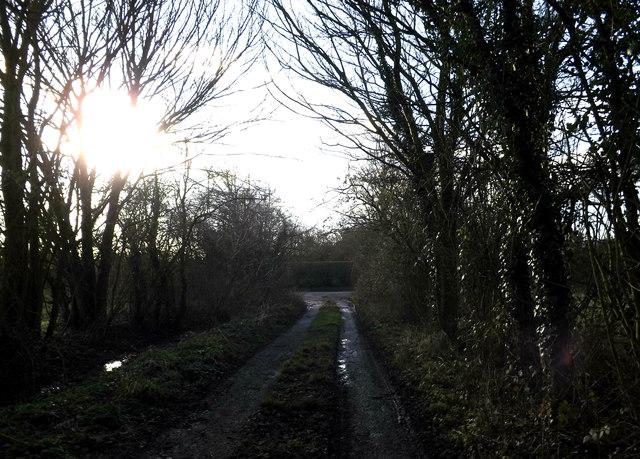 Gin Lane, Laxfield