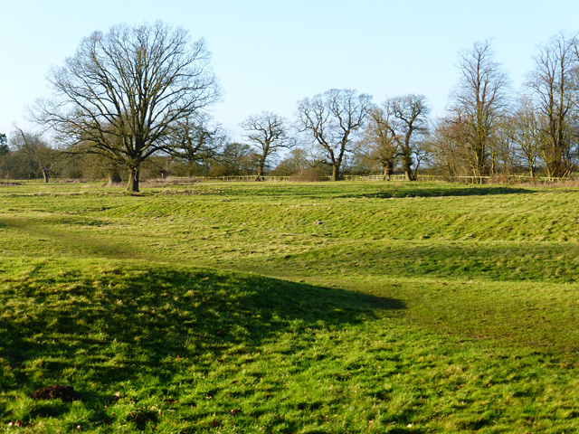 Pasture with earthworks, Aston Abbotts