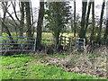 TM4177 : Gate And Footbridge by Keith Evans